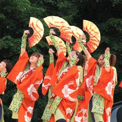紀州龍神さまのあわせ半天は、和の色を意識してチームオリジナルの色に染め上げました。