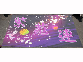 YOSAKOI宴や紫苑連さま