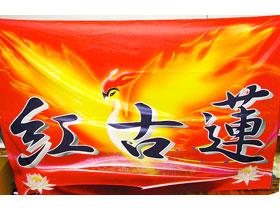 火の鳥をイメージした2m×3m。