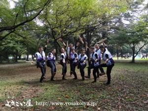 tokorozawa_hanataiko_3
