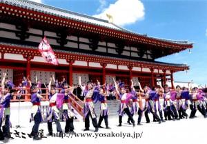 yosakohime_yaezakura_2012