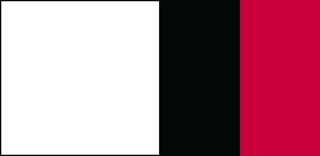 白×黒×ワンポイント
