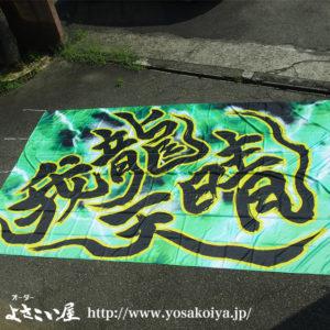 garyoutensei_yosakoi_hata1